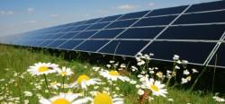 """La Olt """"infloresc"""" parcurile fotovoltaice"""