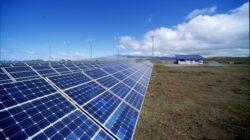 Parcul fotovoltaic de la Livada, al doilea ca marime din Europa, va intra in curand in functiune