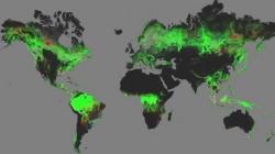 Harta mondiala a defrisarilor. Pamantul a pierdut 2,3 milioane de kilometri patrati de padure in ultimul deceniu