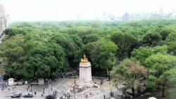 Parcurile inteligente. Cum se vor schimba spatiile verzi in viitor