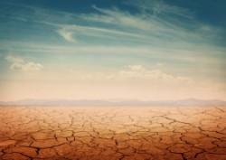 Schimbarile climatice afecteaza fertilitatea solurilor