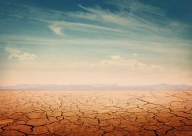 Schimb?rile climatice afecteaza fertilitatea solurilor