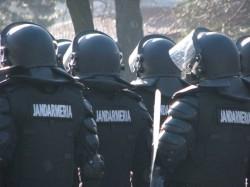 Jandarmii vor asigura paza fondului silvic, potrivit unei modificari a Codului Silvic, adoptate de Senat