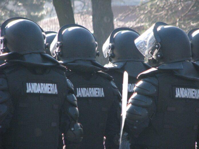 Jandarmii vor asigura paza fondului silvic, potrivit unei modific?ri a Codului Silvic, adoptate de Senat