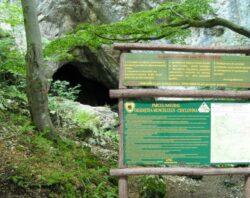 """Planul de management al Parcului """"Gradistea Muncelului – Cioclovina"""" va fi revizuit din fonduri europene"""