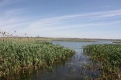 """Asociatia Pentru Botosani lanseaza un proiect privind conservarea biodiversitatii din aria """"Acumularile Rogojesti- Bucecea"""""""