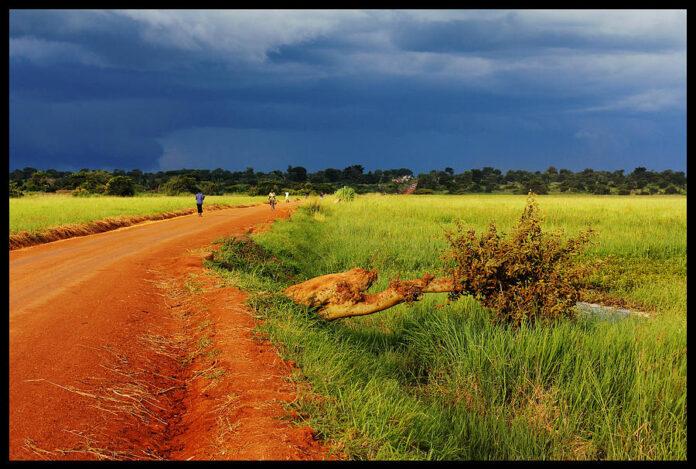 Germania ?i Fran?a vor o alian?? UE-Africa în domeniul securit??ii, dezvolt?rii ?i mediului
