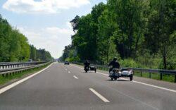 Autostrada Lugoj-Deva va fi prevazuta cu tunele de trecere pentru animalele salbatice