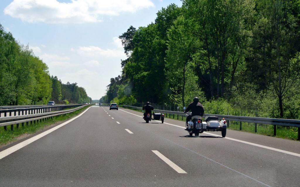 Autostrada Lugoj-Deva va fi prev?zut? cu tunele de trecere pentru animalele s?lbatice