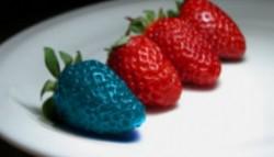 "La ""Antipa"", in spatele usilor inchise: Cum se fabrica … organismele modificate genetic?"