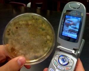Tenerarca, telefonul celular