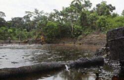 Problemele de mediu cu care s-a confruntat Chevron in lume