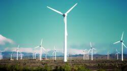 """De la inceputul anului s-au montat doar 9 turbine eoliene. In 2013 au fost plantate 384 de """"mori"""""""