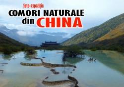 Comorile Chinei ajung la Complexul Muzeal de Stiintele Naturii