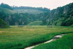 1,5 milioane de euro pentru revizuirea planului de management al Parcului Natural Gradistea Muncelului