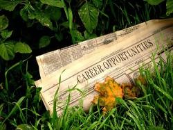 Rovana Plumb si Eduard Davey au semnat o declaratie privind crearea de locuri de munca verzi