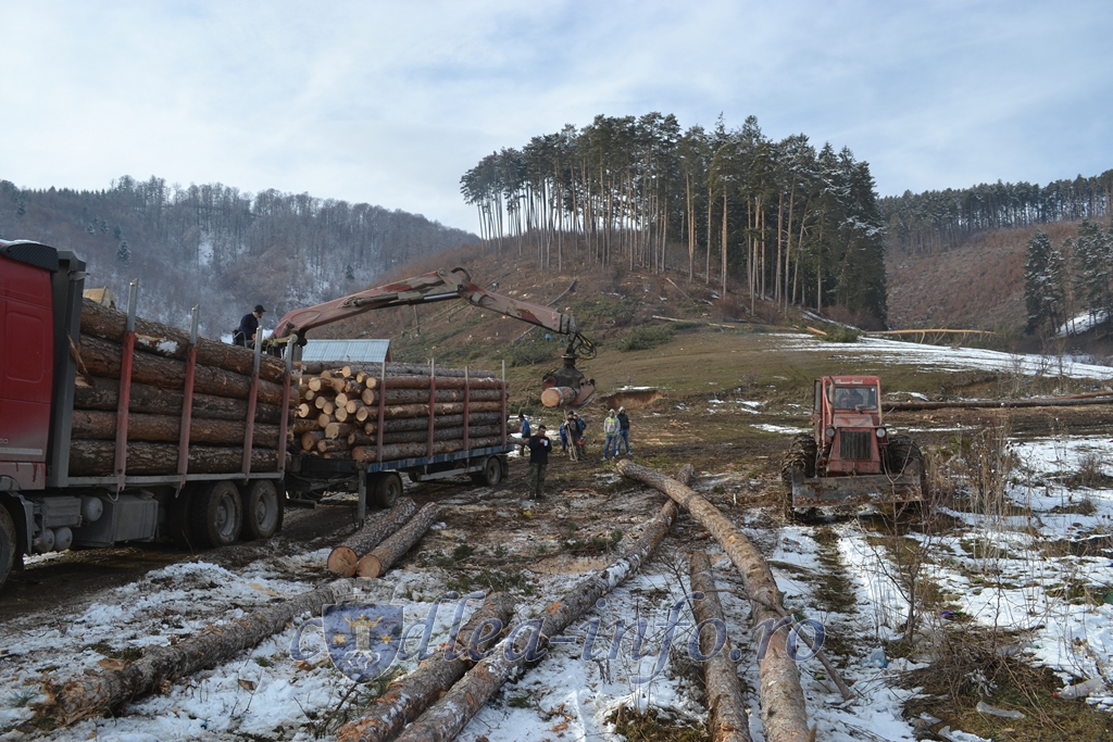 """A fost lansat """"Radarul p?durilor"""", primul sistem prin GPS de control al transporturilor de lemne"""