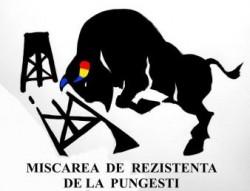 Mobilizare pe Facebook pentru un amplu protest la Pungesti