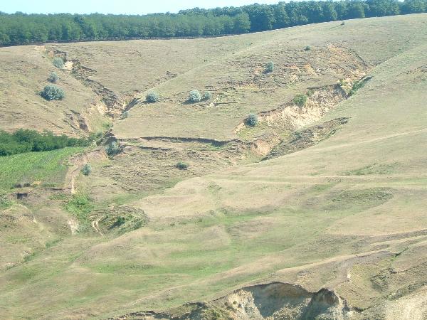 """""""Degradarea terenurilor este colosal?. A ajuns s? se dubleze de la 90 încoace"""""""