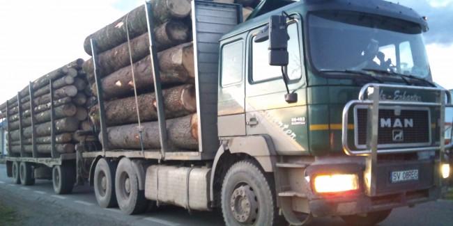 """Radarul lemnului furat """"bip?ie"""" în Sibiu"""
