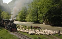 Turismul din Muntii Carpati ar putea aduce 42 de milioane de euro la bugetul statului