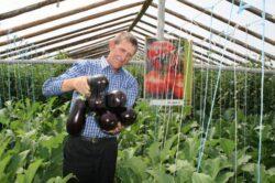 La Suceava cea mai mare fermă eco născută dintr-un hobby