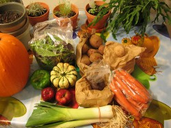 Beneficiile si riscurile dietei vegetariene