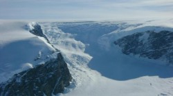 Antarctica, acoperita de paduri?