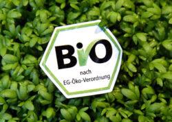 Agricultura ecologica: 10 aspecte de care tinem cont!
