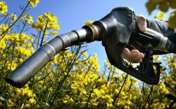 Parlamentul european sprijina tranzitia catre biocombustibili avansati