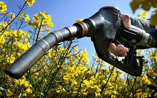 Noua politică UE pentru biocarburanți anulează emisii de 320 de milioane de tone de CO2