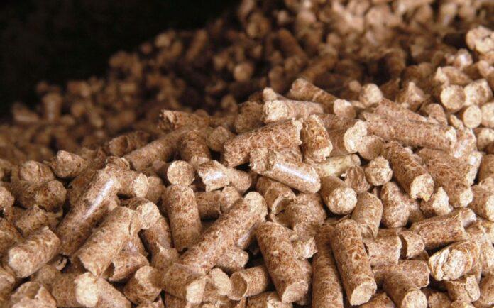 Proiectul Energie şi Biomasă 2, finanţat de Uniunea Europeană, s-a lansat