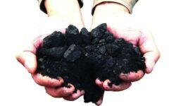 Carbunele, resursa viitorului. Dezbatere la nivel inalt pe tema relansarii industriei miniere