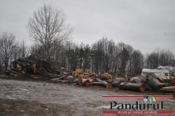 Padure defrisata intr-o comuna deja distrusa de alunecarile de teren