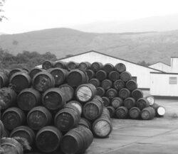 Rau scotian poluat cu whisky