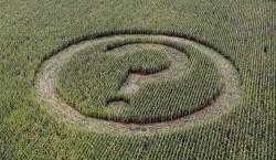Conflictele comerciale ale UE - Carnea de vita, alimentele OMG, bananele si panourile solare