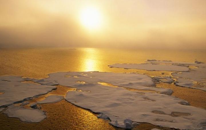 Înc?lzirea global?, un fenomen de necontestat. Septembrie 2014 a fost cea mai cald? lun? septembrie înregistrat? pe P?mânt din 1880 încoace