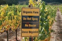 Firmele care certifica produsele ecologice vor fi supuse verificarii de catre Ministerul Agriculturii