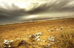 STUDIU: Temperaturile globale ar putea creste cu cel putin 4 grade Celsius pana in 2100