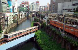 Sefii CE, interesati de un transport urban mai curat