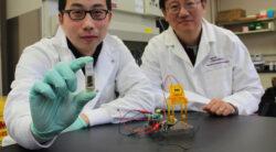 Bio-bateriile alimentate cu zahar, de 10 ori mai puternice decat cele Li-Ion si mai economice