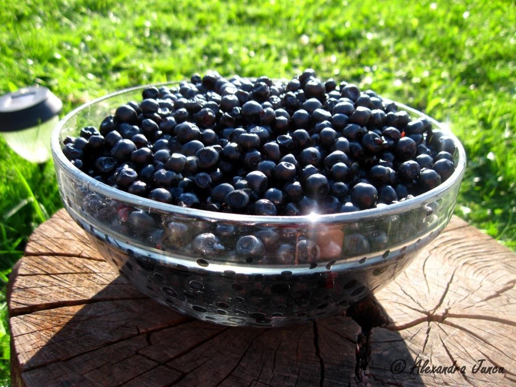 Efectele uimitoare ale consumului de afine