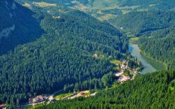 LIFE Connect Carpathians: Ursul si lupul in zona coridorului ecologic Apuseni – Meridionali
