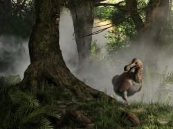 Povestea porumbelului urias, Dodo