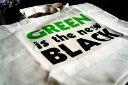 Micii antreprenori vor fi chestionati privind practicile ecologice in afaceri
