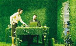 IMM-urile devin mai verzi pentru a fi competitive