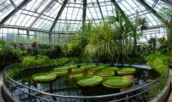 Cele mai frumoase gradini botanice din Romania