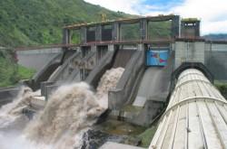 ANRE: Romania are un potential imens pe biomasa si energie hidro