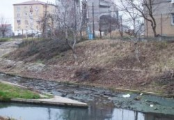 Ecologistii acuza: In Peta se varsa ilegal apa de canalizare menajera