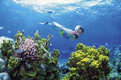 marea-bariera-de-corali-atunci